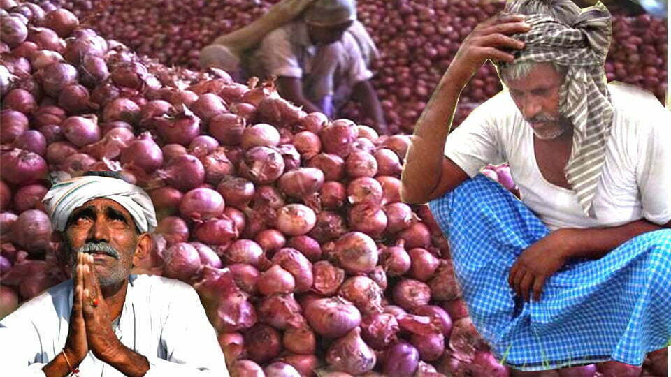 Onion Cross 200 Rs in Market Price. But Farmers Get Only Rs 8 for 1 Kg. Who Makes All The Profit